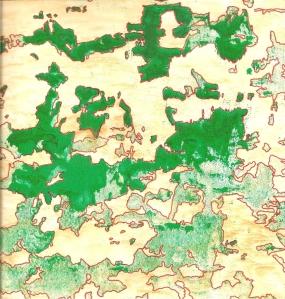 sketchbook green cracked wall
