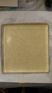 Gelatin Plate