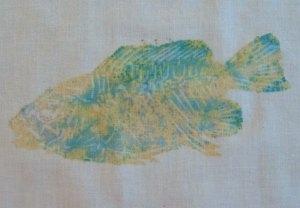 Color Magnet Fish